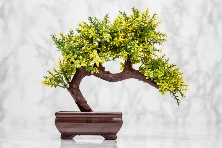 Fake Artificial Bonsai Tree