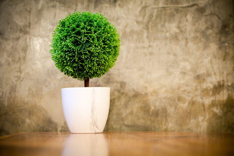 best-artificial-bonsai-trees
